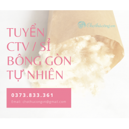 chothucong.vn tuyen CTV